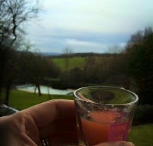 Chiltern Escape Apple, Ginger and Carrot Shot